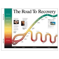 Road to Recovery Poster, Laminated